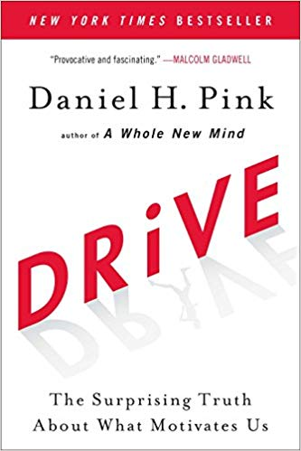 Drive Book Cover Image