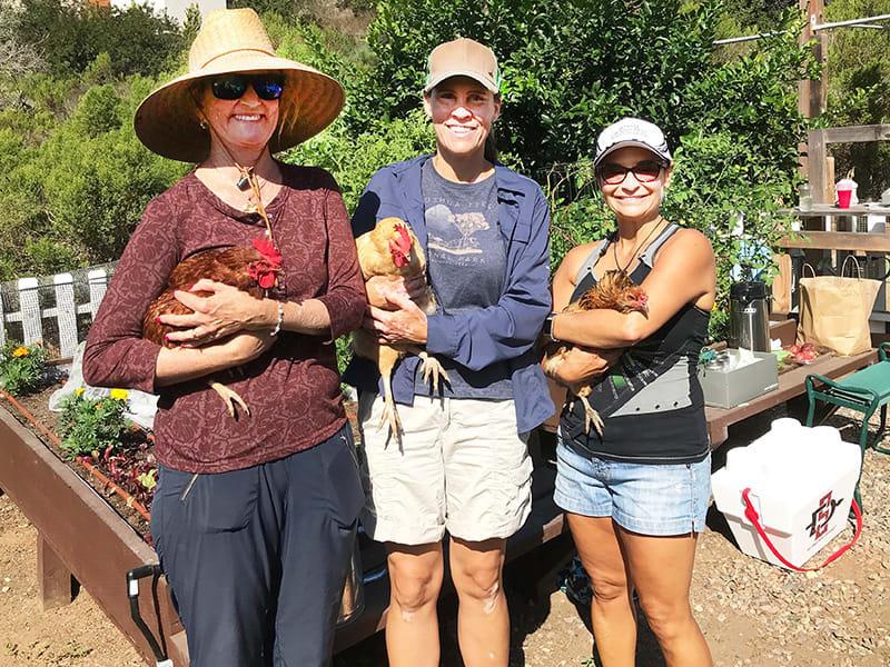grauer gardeners with livestock
